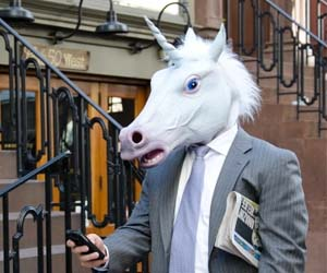 Unicorns have nothing to do with martial arts.